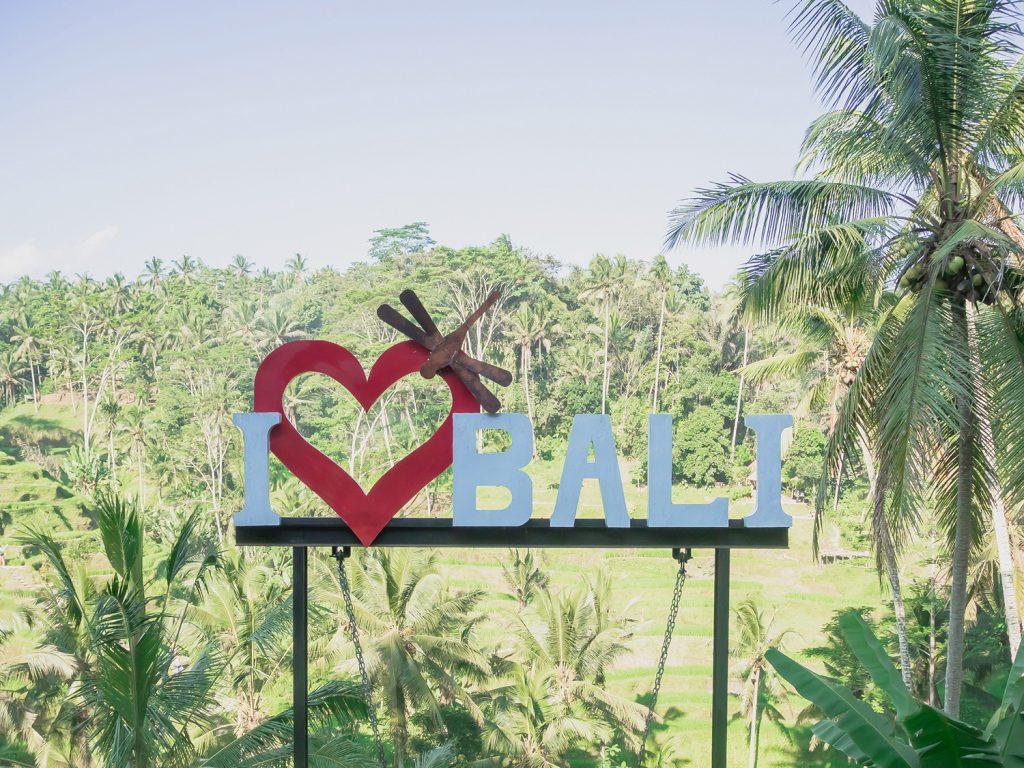Tegallalang-Rice-TeracceBali-_TravelsAndScuba_02