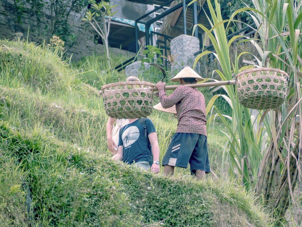 Tegallalang-Rice-TeracceBali-_TravelsAndScuba_17